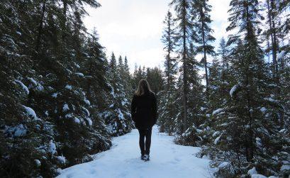 Sneeuw in Algonquin Park