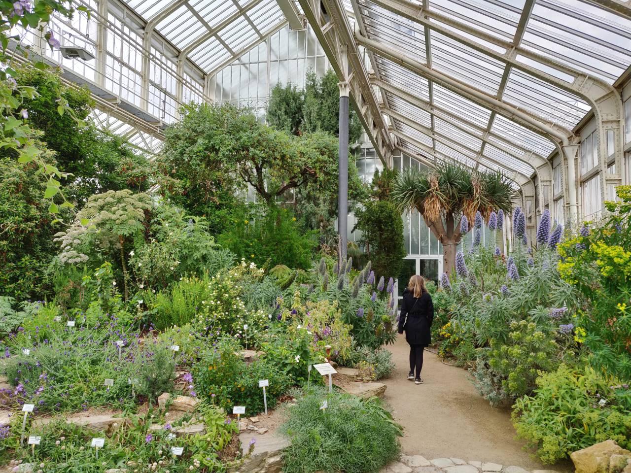 Botanische tuin Berlijn