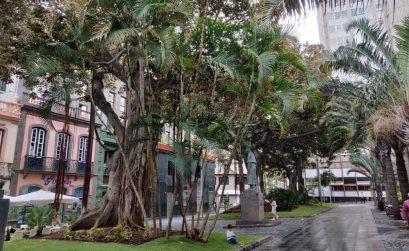 doen op Tenerife als het regent